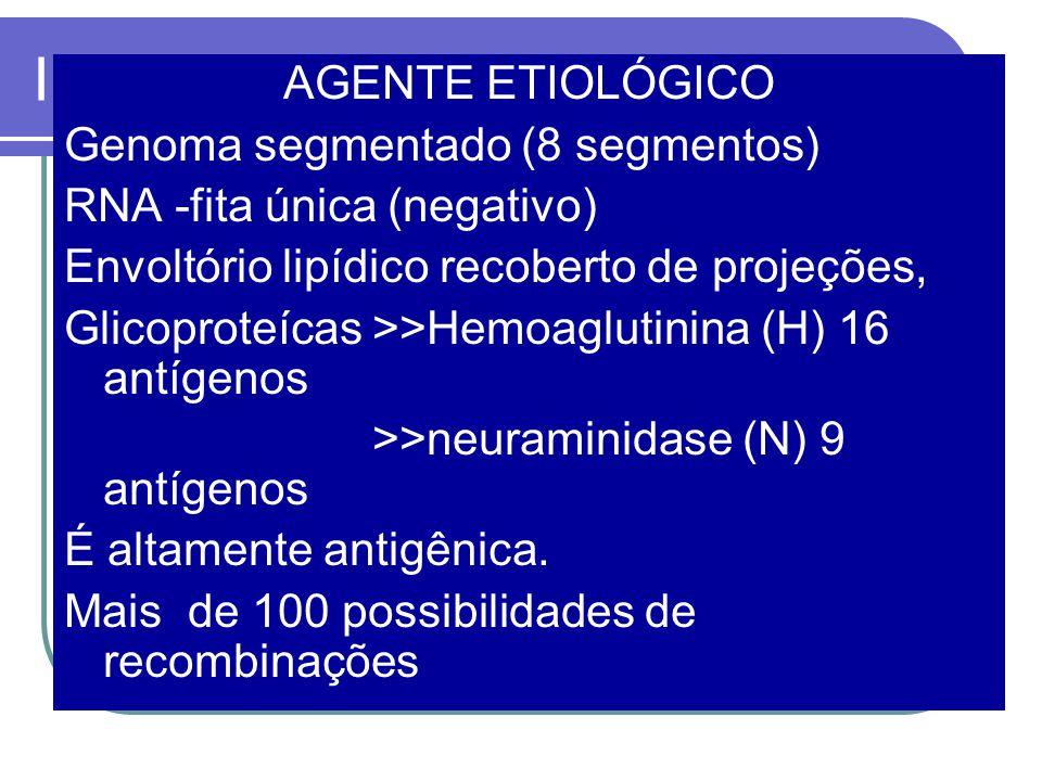INFLUENZA AGENTE ETIOLÓGICO Genoma segmentado (8 segmentos)