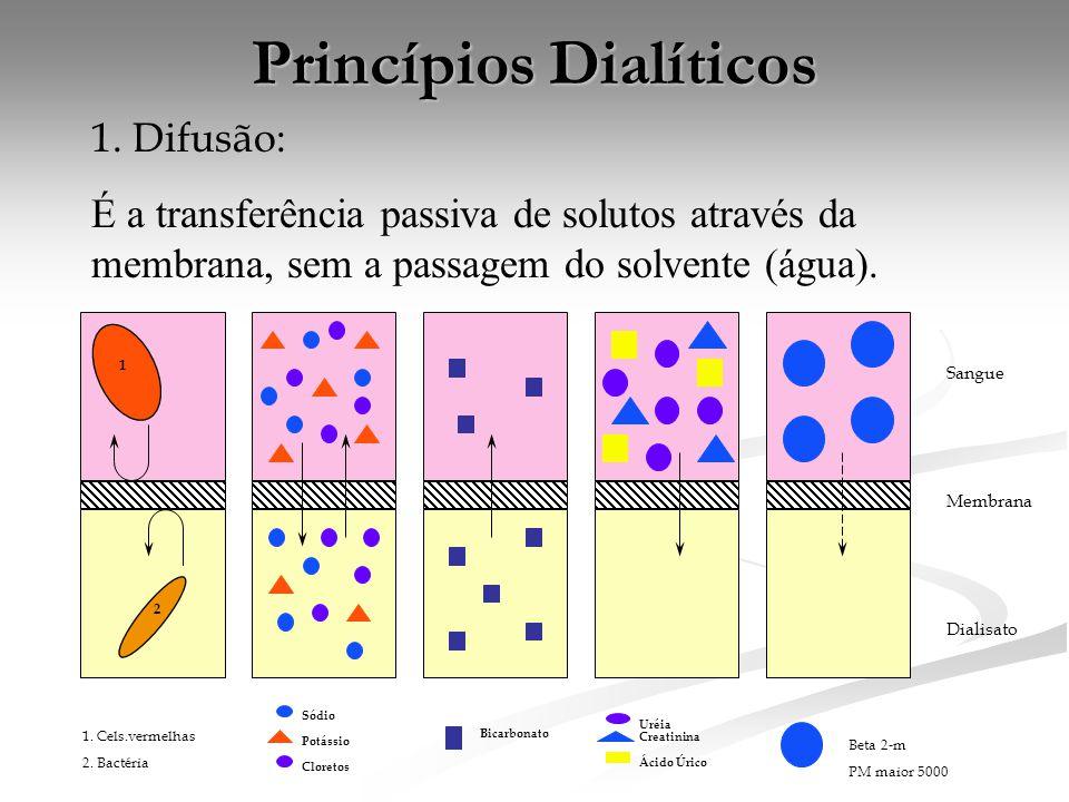 Princípios Dialíticos