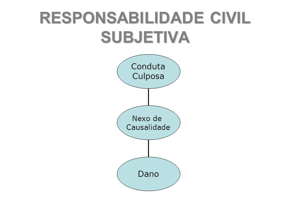 RESPONSABILIDADE CIVIL SUBJETIVA