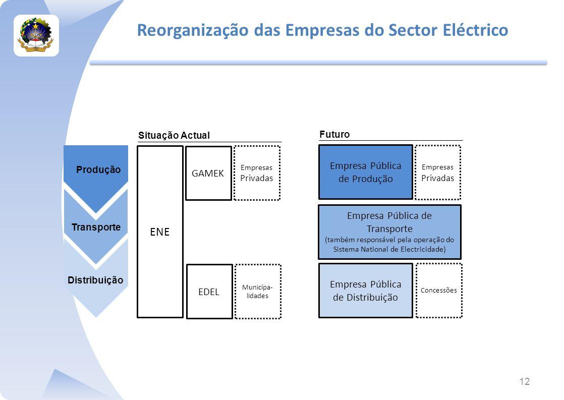 Reorganização das Empresas do Sector Eléctrico