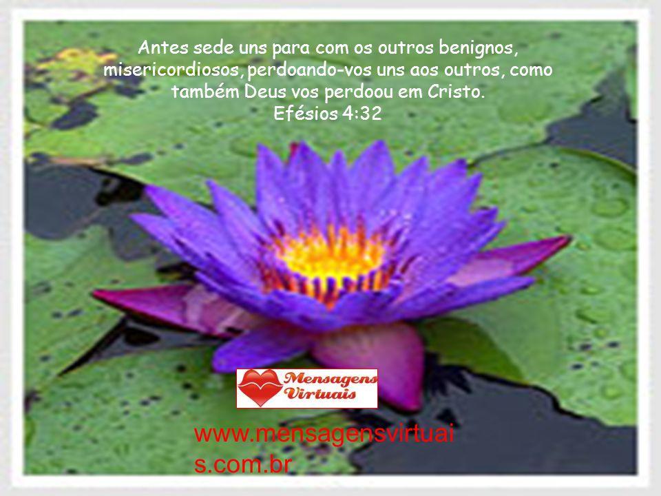 Antes sede uns para com os outros benignos, misericordiosos, perdoando-vos uns aos outros, como também Deus vos perdoou em Cristo.