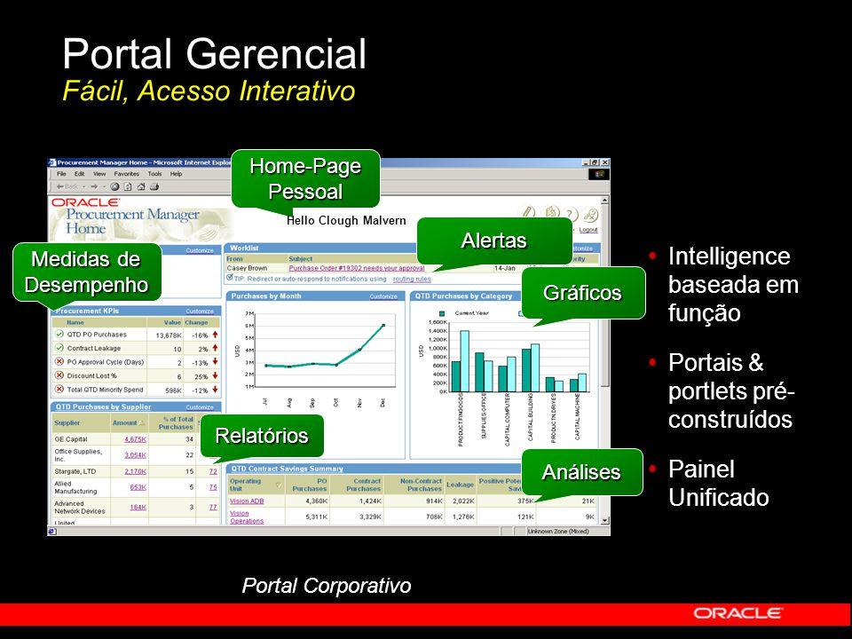 Portal Gerencial Fácil, Acesso Interativo