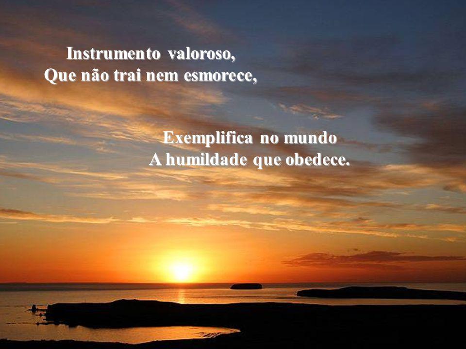 Que não trai nem esmorece, A humildade que obedece.