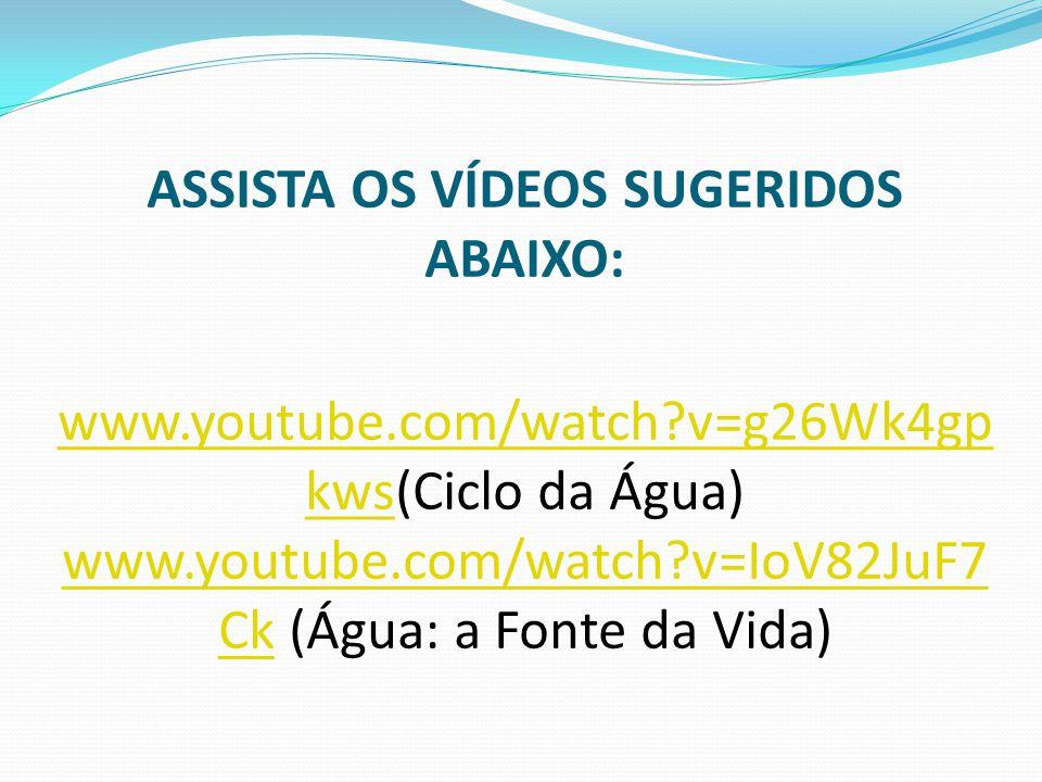 ASSISTA OS VÍDEOS SUGERIDOS ABAIXO: www. youtube. com/watch