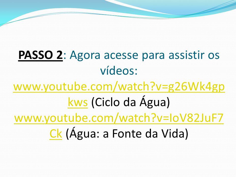 PASSO 2: Agora acesse para assistir os vídeos: www. youtube. com/watch