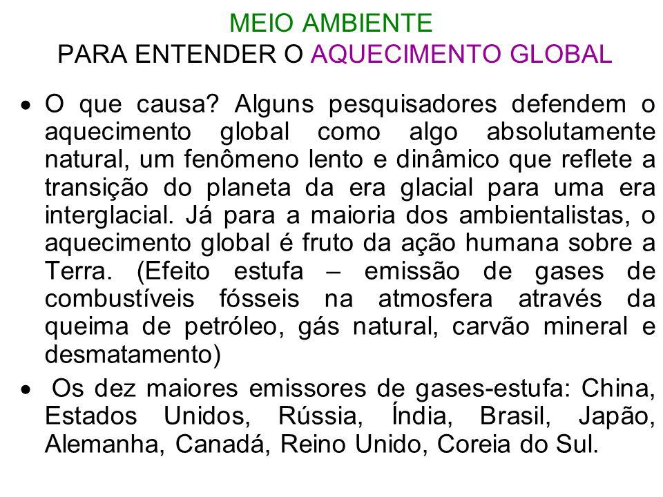 MEIO AMBIENTE PARA ENTENDER O AQUECIMENTO GLOBAL