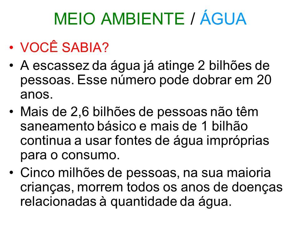 MEIO AMBIENTE / ÁGUA VOCÊ SABIA