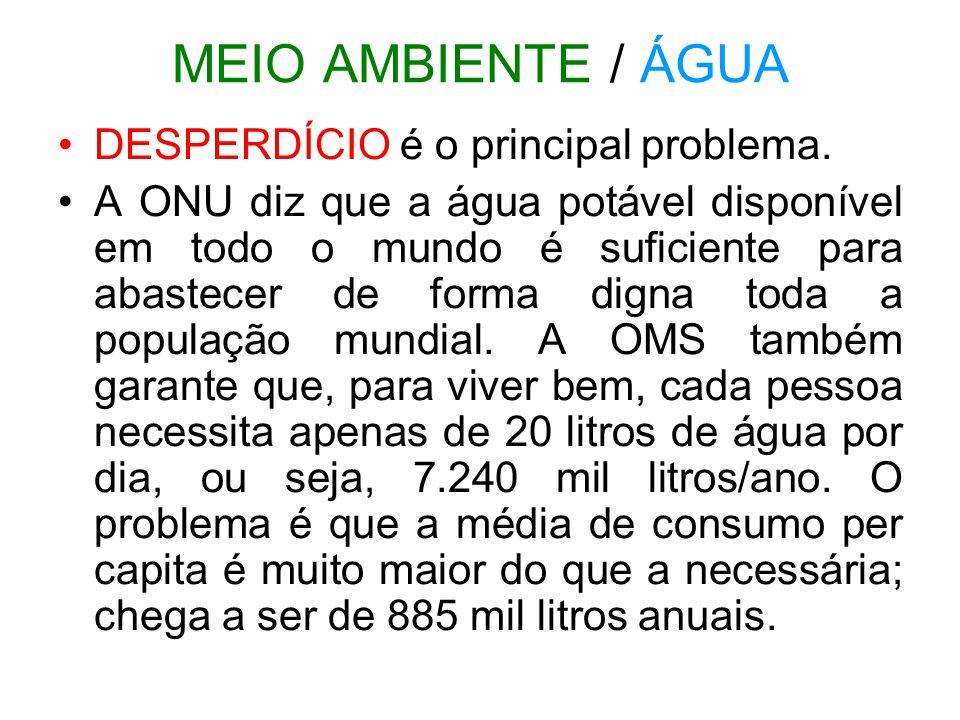 MEIO AMBIENTE / ÁGUA DESPERDÍCIO é o principal problema.