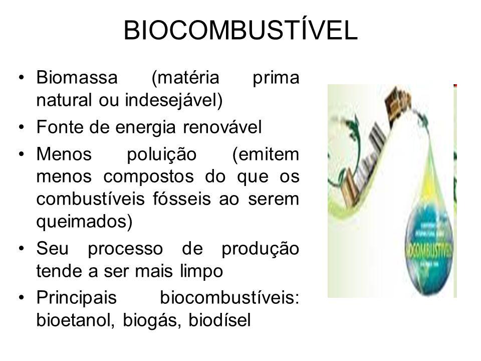 BIOCOMBUSTÍVEL Biomassa (matéria prima natural ou indesejável)
