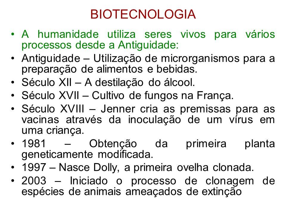BIOTECNOLOGIA A humanidade utiliza seres vivos para vários processos desde a Antiguidade: