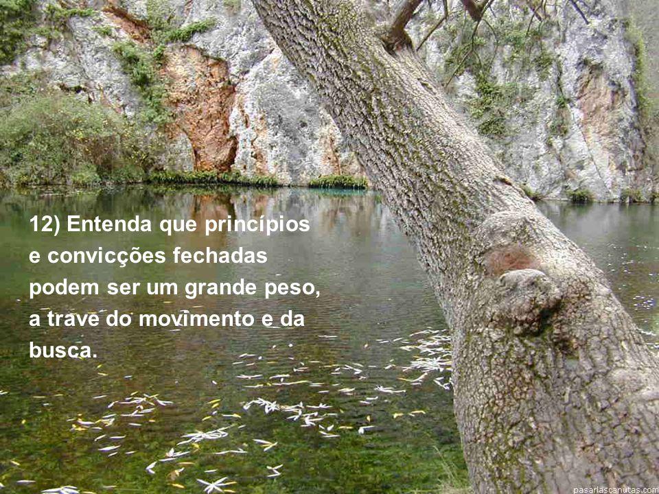 12) Entenda que princípios