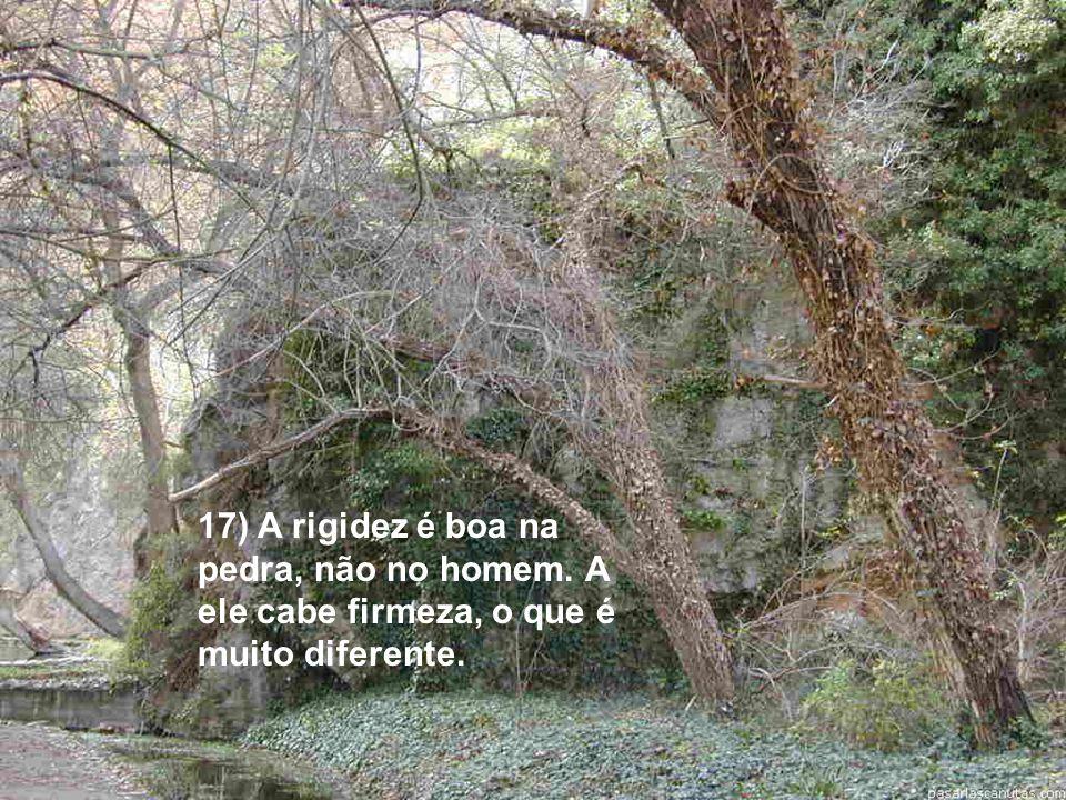 17) A rigidez é boa na pedra, não no homem