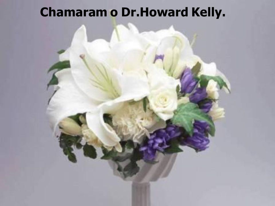 Chamaram o Dr.Howard Kelly.