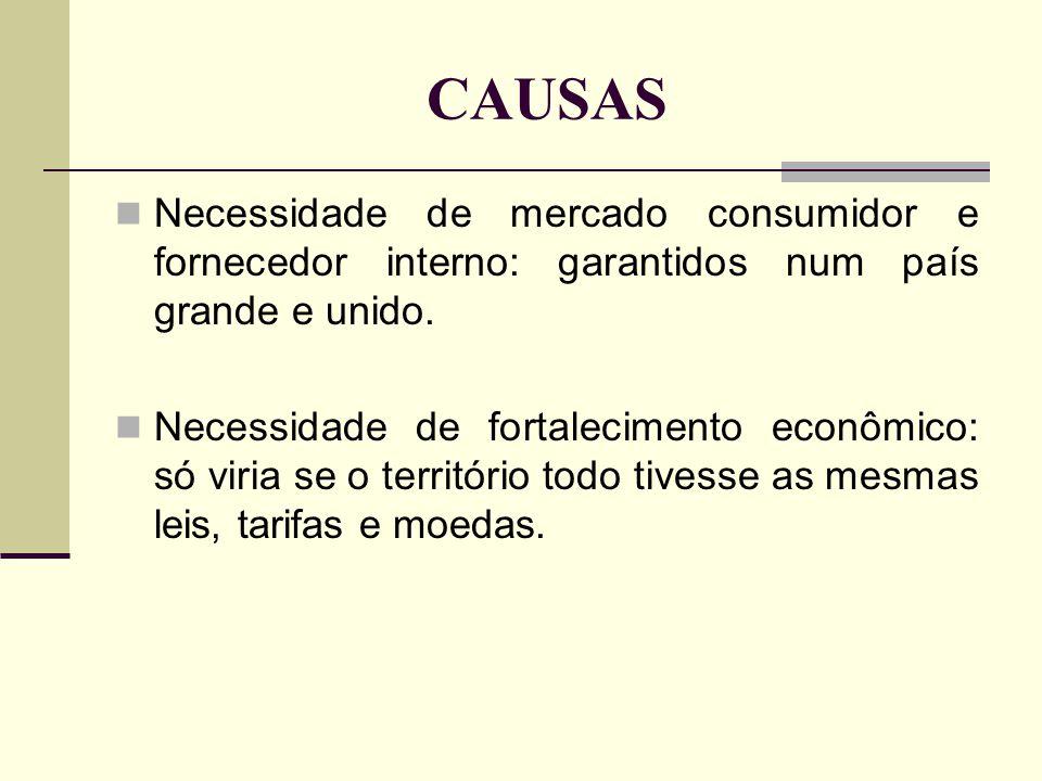 CAUSAS Necessidade de mercado consumidor e fornecedor interno: garantidos num país grande e unido.