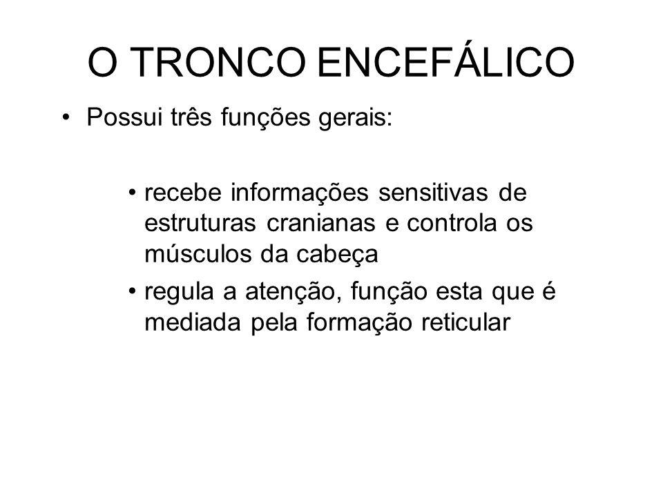 O TRONCO ENCEFÁLICO Possui três funções gerais: