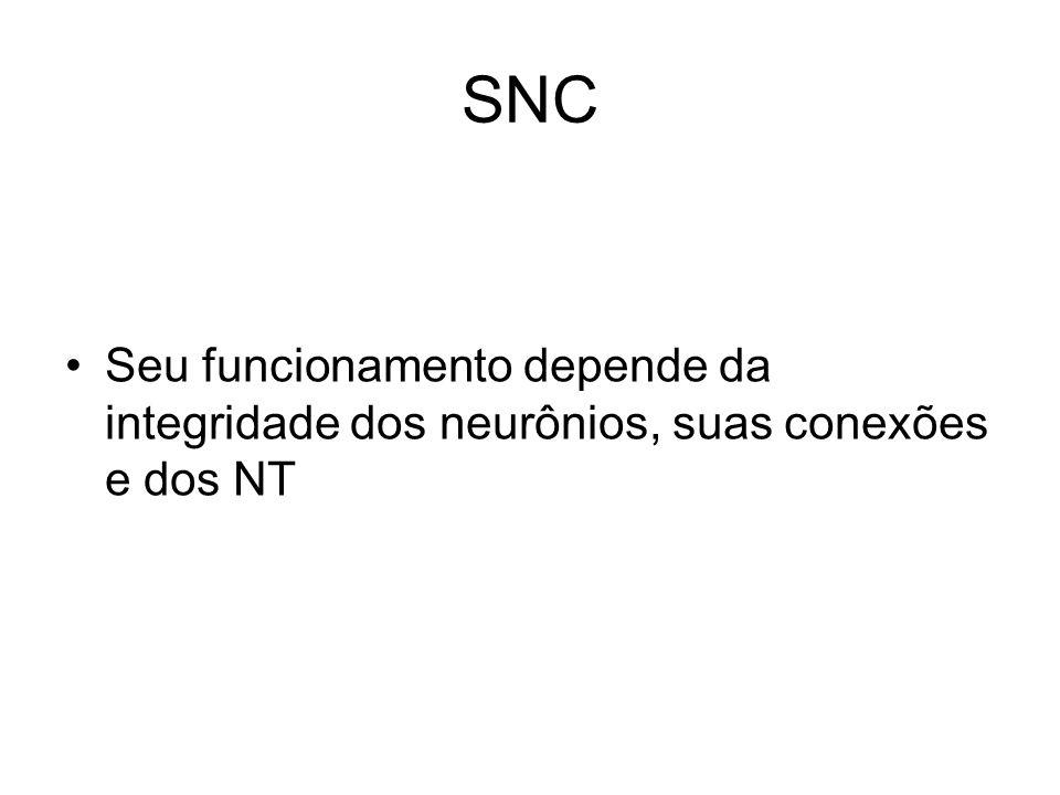 SNC Seu funcionamento depende da integridade dos neurônios, suas conexões e dos NT
