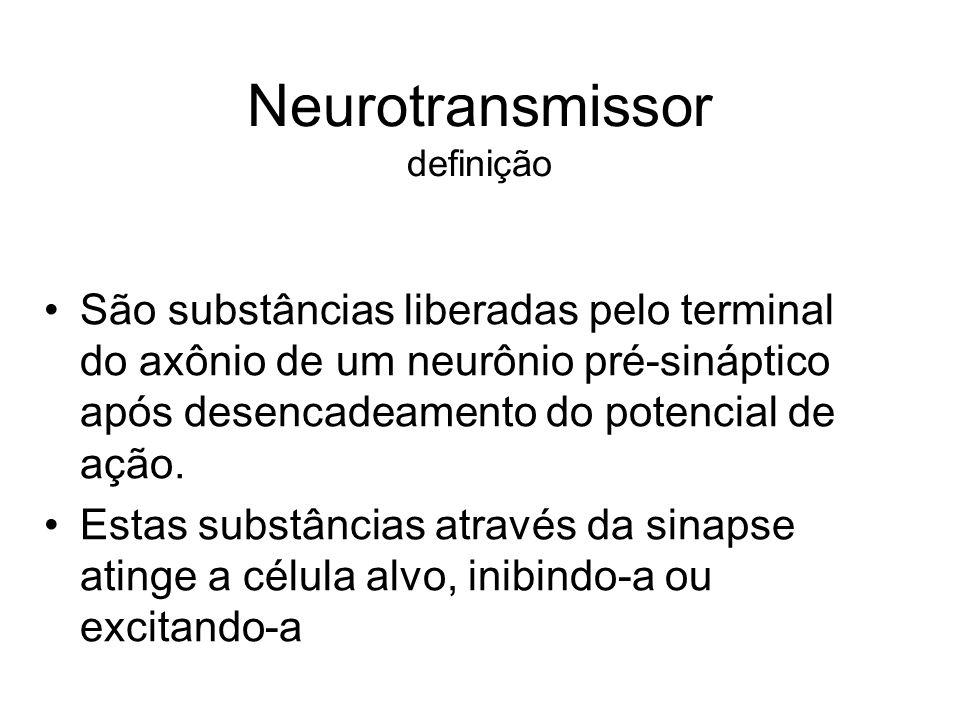 Neurotransmissor definição