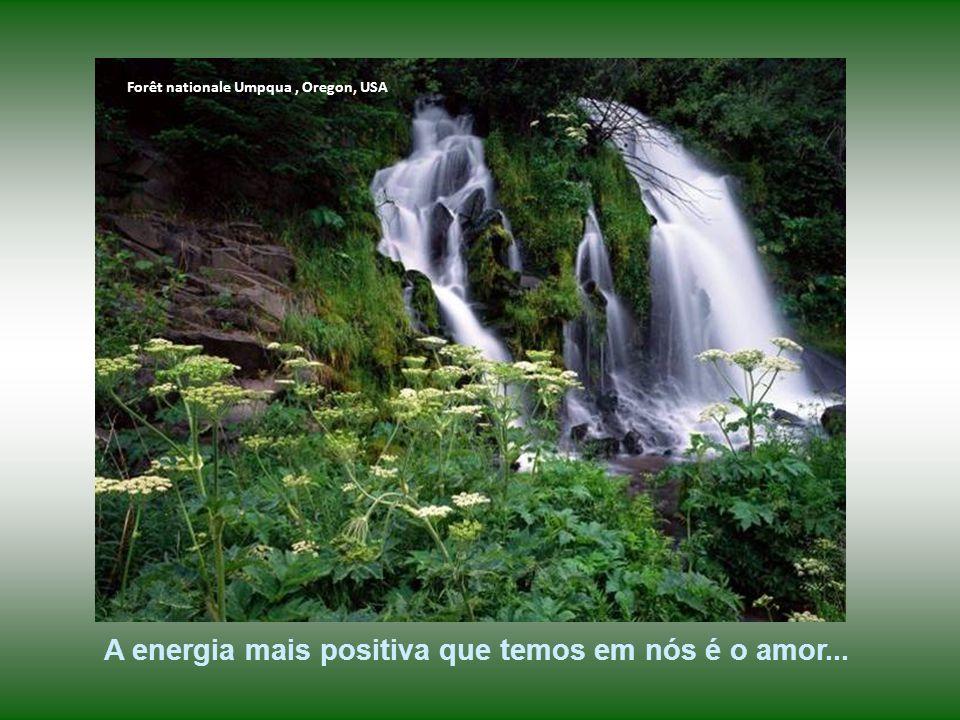 A energia mais positiva que temos em nós é o amor...