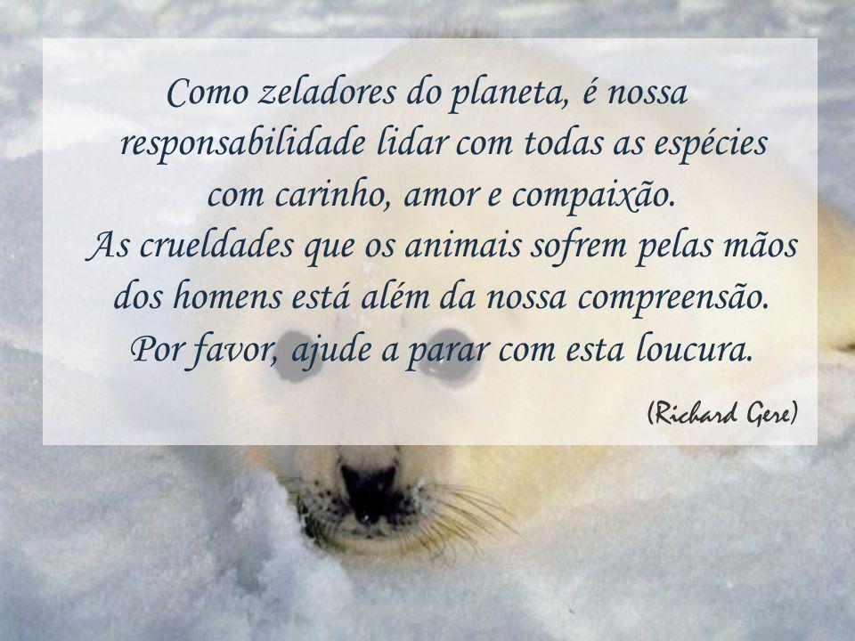Como zeladores do planeta, é nossa responsabilidade lidar com todas as espécies com carinho, amor e compaixão. As crueldades que os animais sofrem pelas mãos dos homens está além da nossa compreensão. Por favor, ajude a parar com esta loucura.
