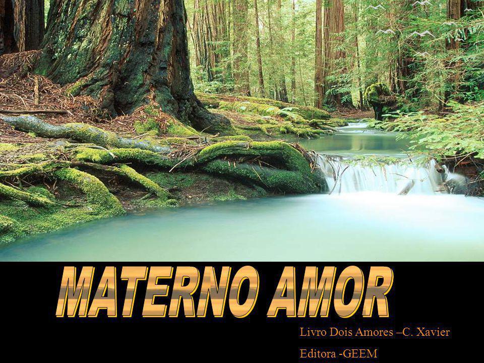 MATERNO AMOR Livro Dois Amores –C. Xavier Editora -GEEM