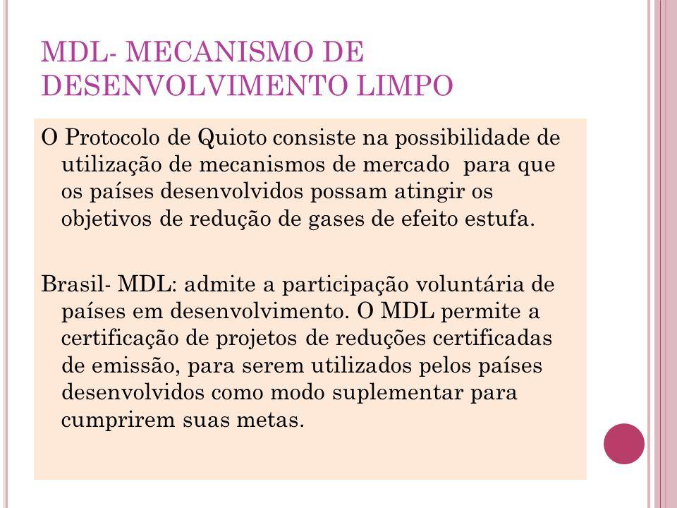 MDL- MECANISMO DE DESENVOLVIMENTO LIMPO