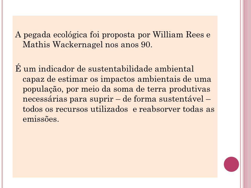 A pegada ecológica foi proposta por William Rees e Mathis Wackernagel nos anos 90.