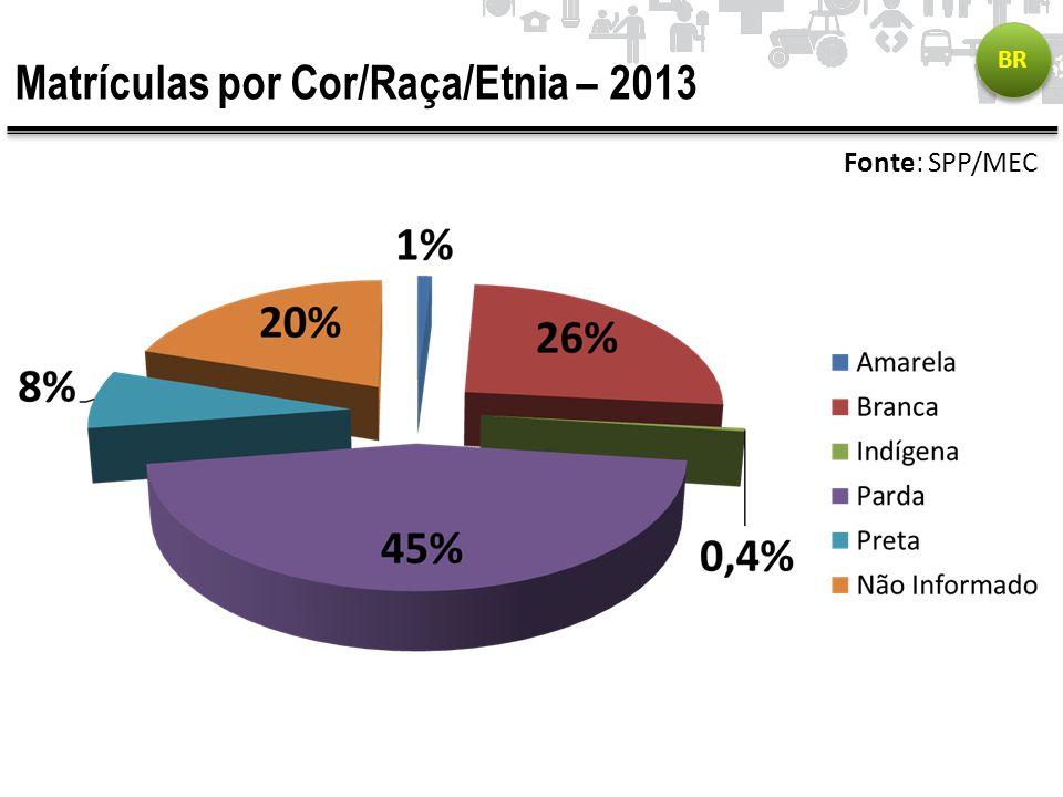 Matrículas por Cor/Raça/Etnia – 2013