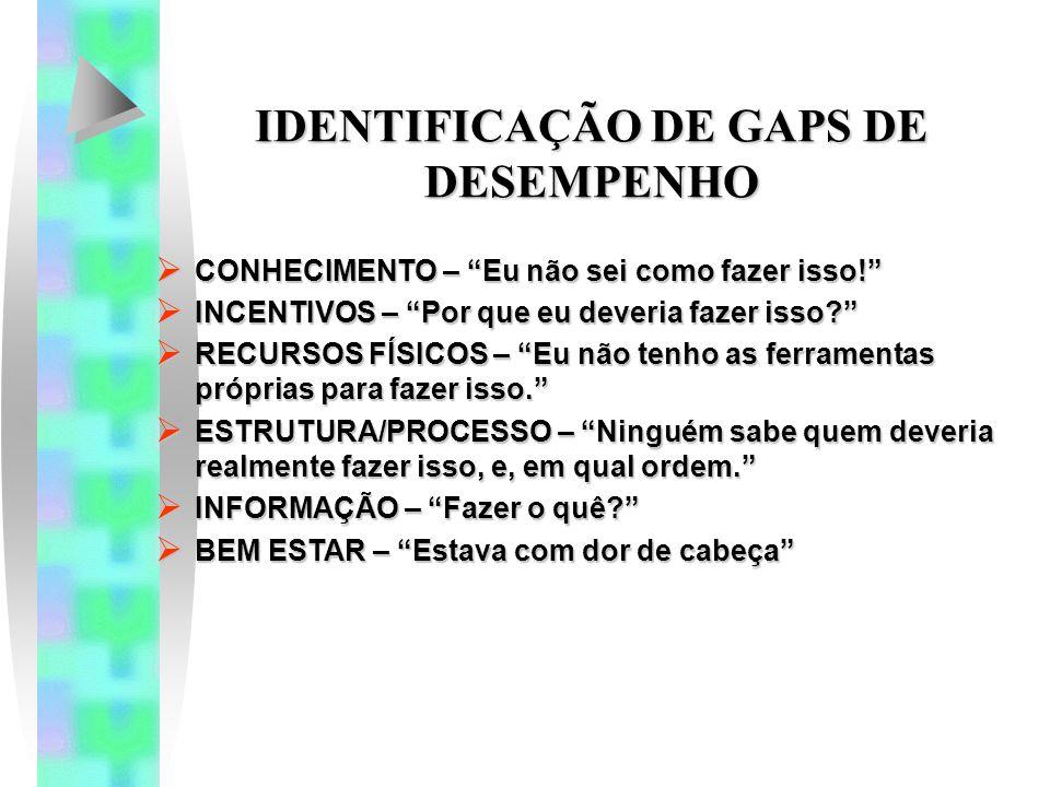 IDENTIFICAÇÃO DE GAPS DE DESEMPENHO