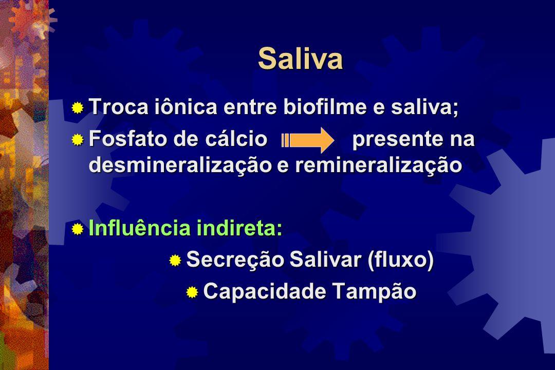 Secreção Salivar (fluxo)