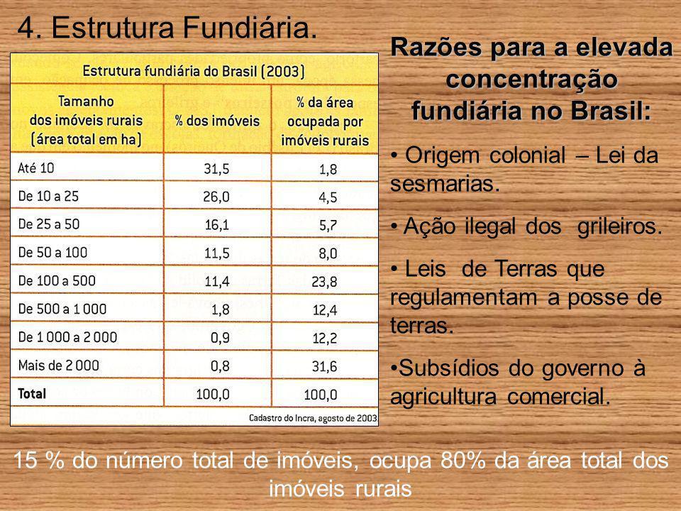 Razões para a elevada concentração fundiária no Brasil: