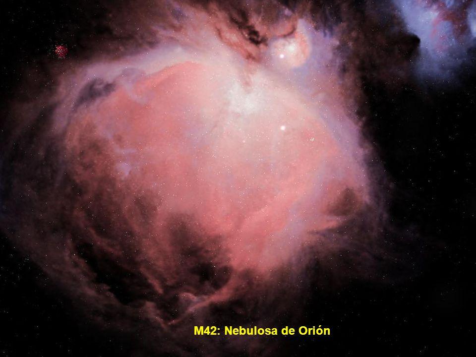 M42: Nebulosa de Orión
