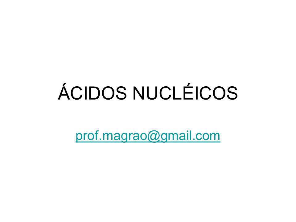 ÁCIDOS NUCLÉICOS prof.magrao@gmail.com