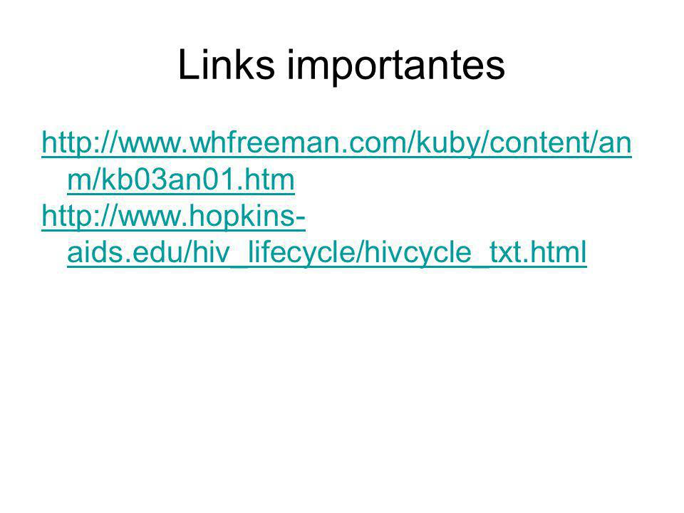 Links importantes http://www.whfreeman.com/kuby/content/anm/kb03an01.htm.