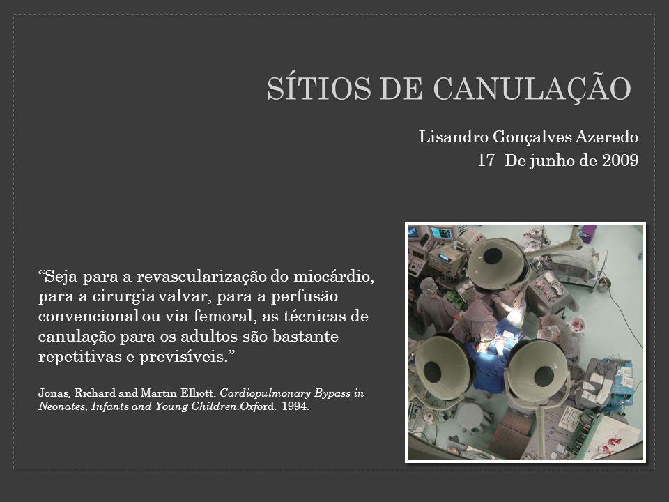 SÍTIOS DE CANULAÇÃO Lisandro Gonçalves Azeredo 17 De junho de 2009