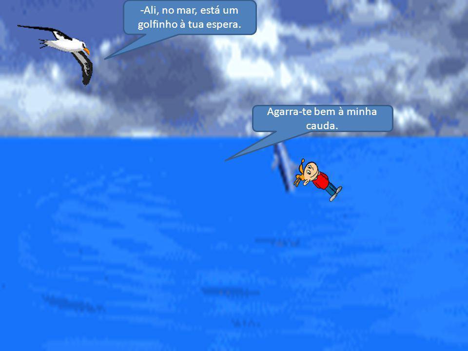-Ali, no mar, está um golfinho à tua espera.
