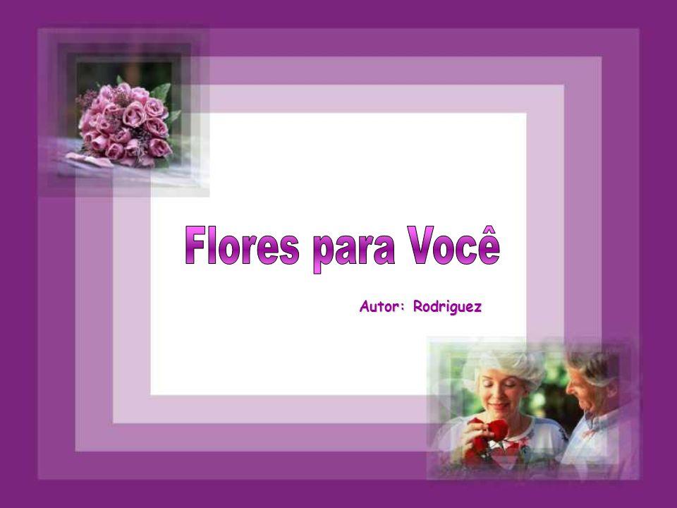 Flores para Você Autor: Rodriguez