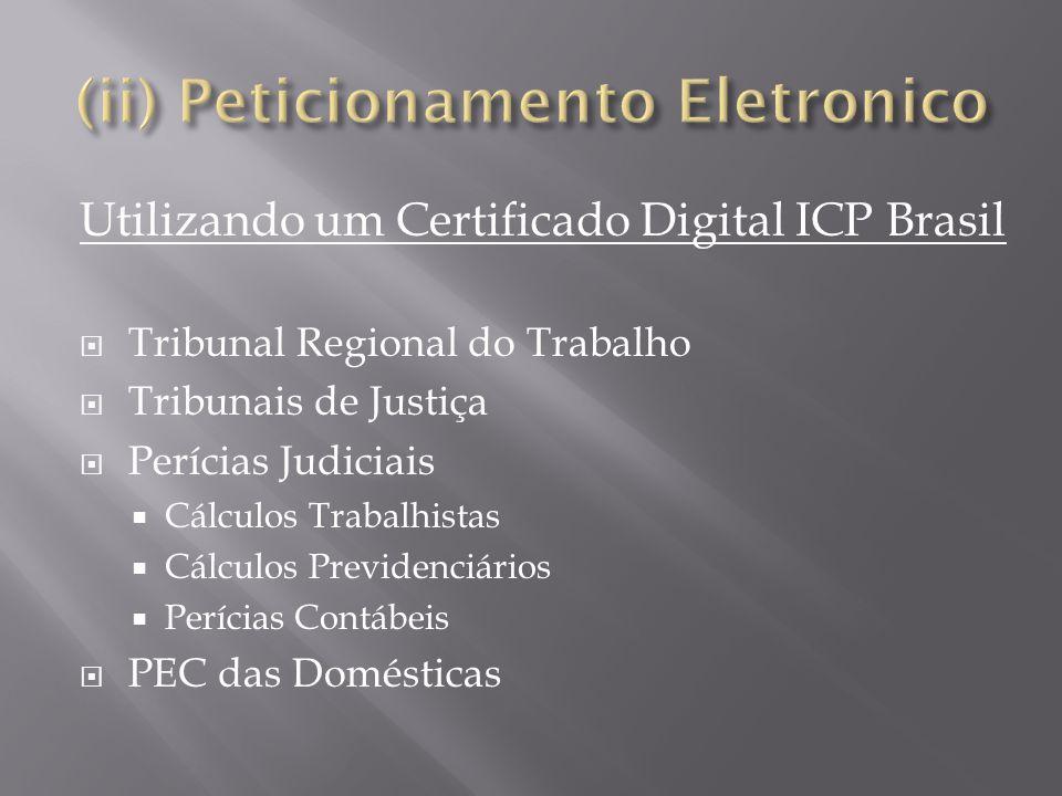 (ii) Peticionamento Eletronico