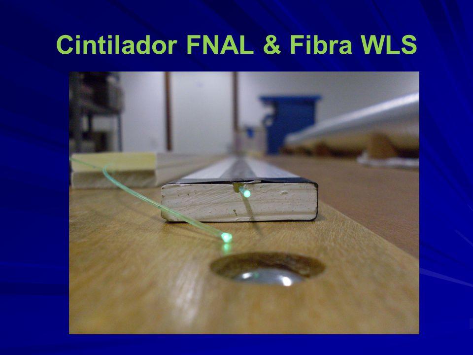 Cintilador FNAL & Fibra WLS