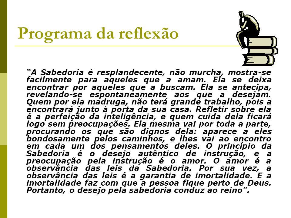 Programa da reflexão