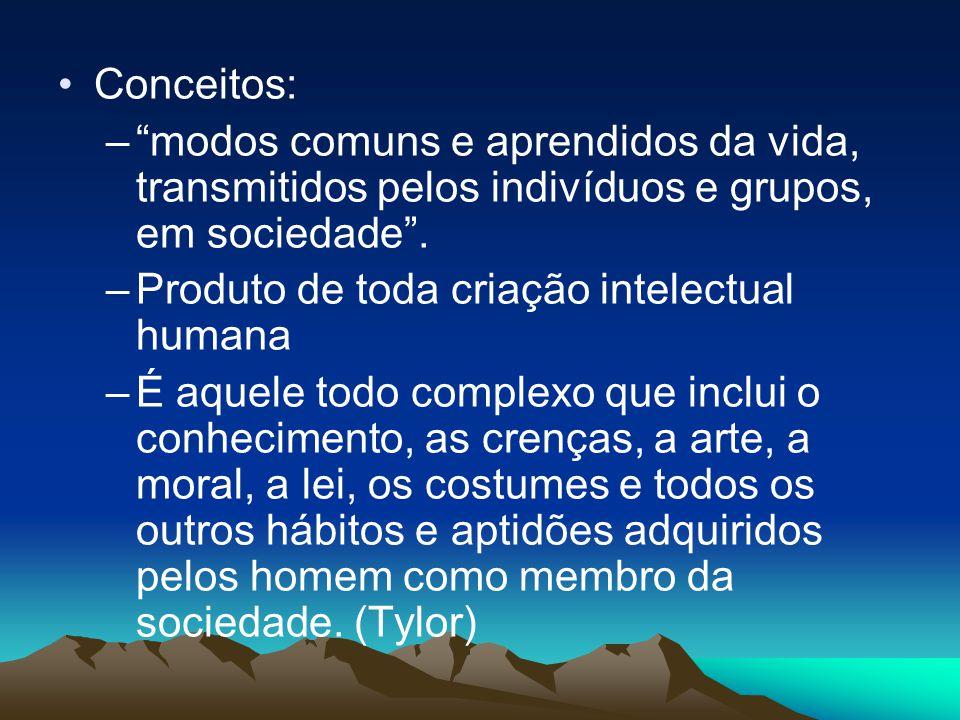 Conceitos: modos comuns e aprendidos da vida, transmitidos pelos indivíduos e grupos, em sociedade .