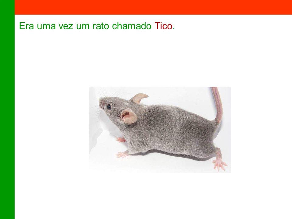 Era uma vez um rato chamado Tico.