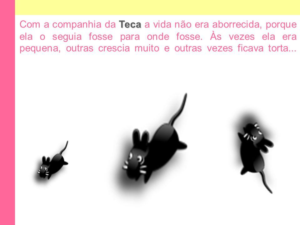 Com a companhia da Teca a vida não era aborrecida, porque ela o seguia fosse para onde fosse.