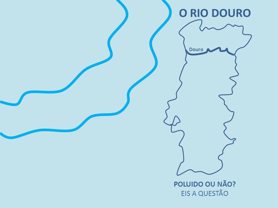 O RIO DOURO Douro POLUIDO OU NÃO EIS A QUESTÃO