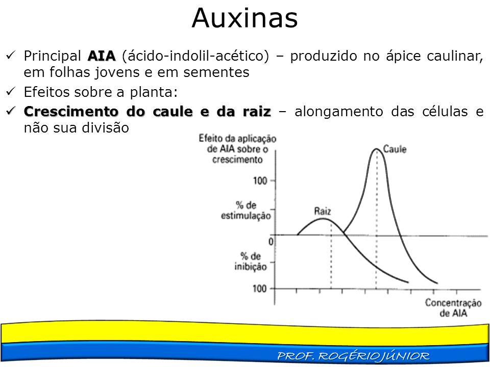 Auxinas Principal AIA (ácido-indolil-acético) – produzido no ápice caulinar, em folhas jovens e em sementes.