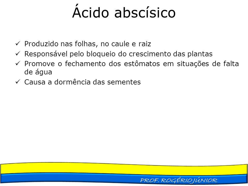 Ácido abscísico Produzido nas folhas, no caule e raiz