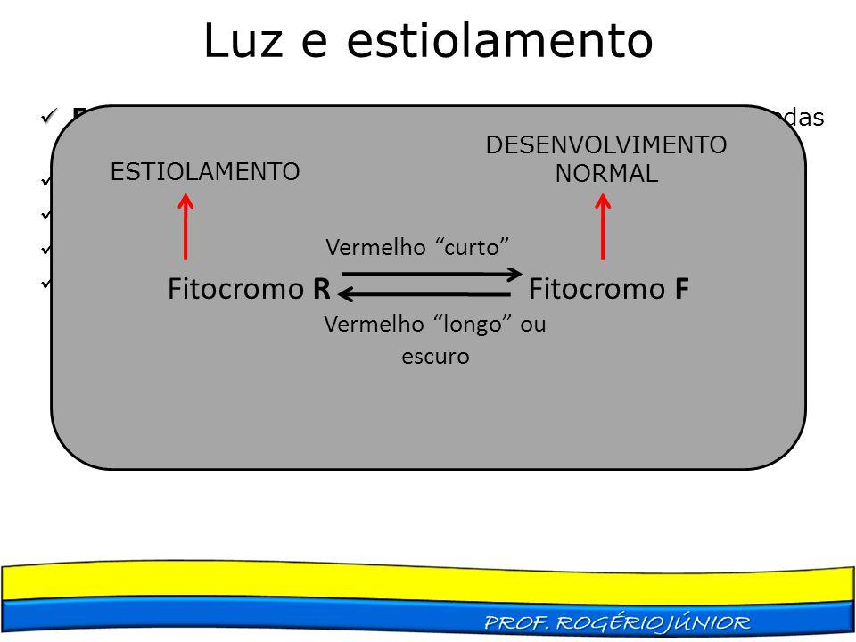 Luz e estiolamento Fitocromo R Fitocromo F Vermelho curto