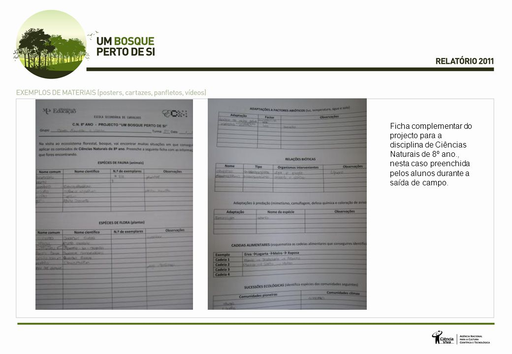 Ficha complementar do projecto para a disciplina de Ciências Naturais de 8º ano., nesta caso preenchida pelos alunos durante a saída de campo.