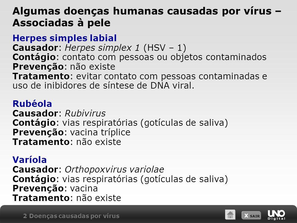 Algumas doenças humanas causadas por vírus –Associadas à pele