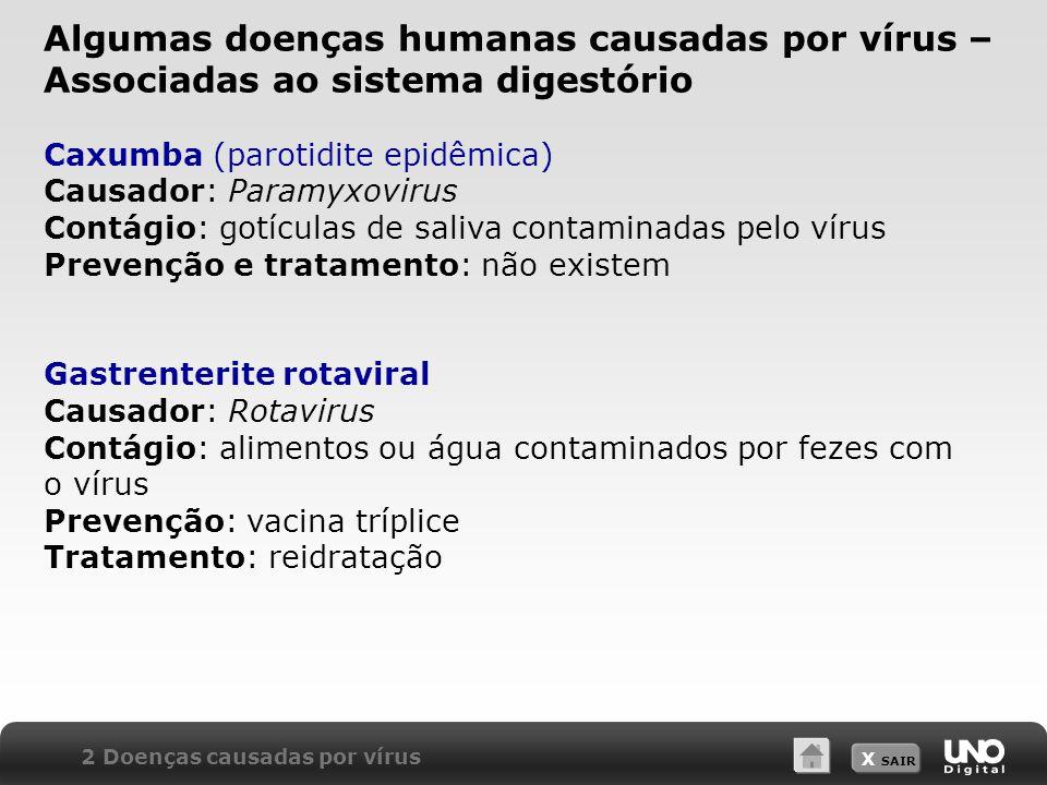 Algumas doenças humanas causadas por vírus – Associadas ao sistema digestório