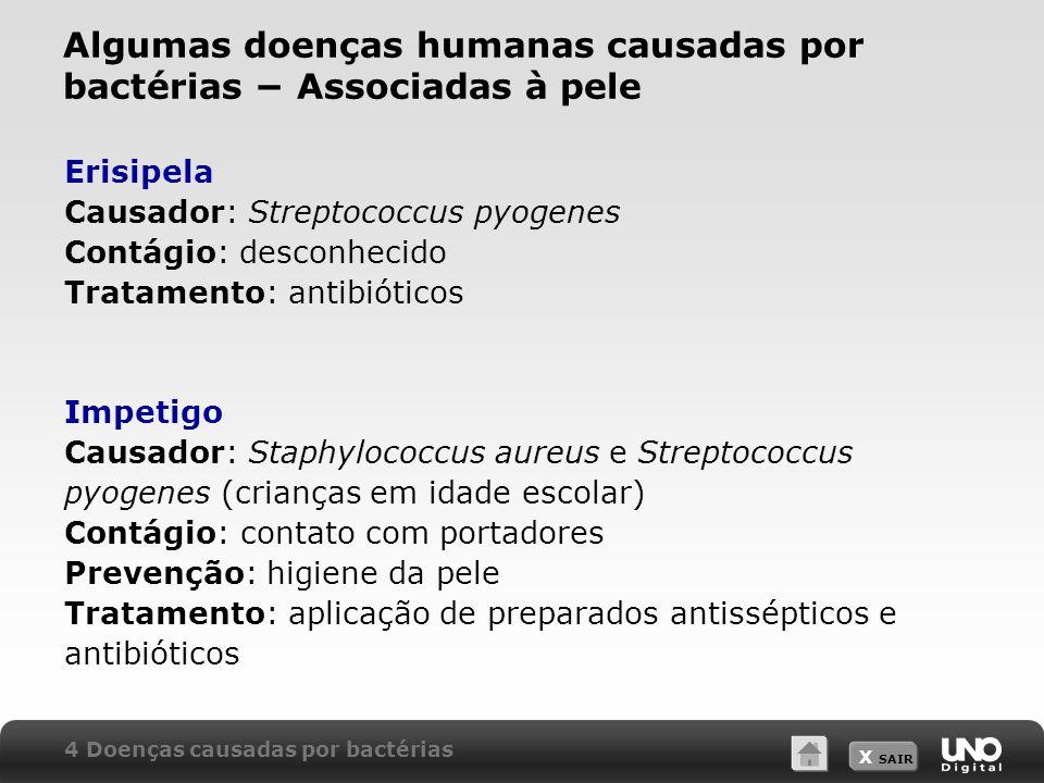 Algumas doenças humanas causadas por bactérias − Associadas à pele